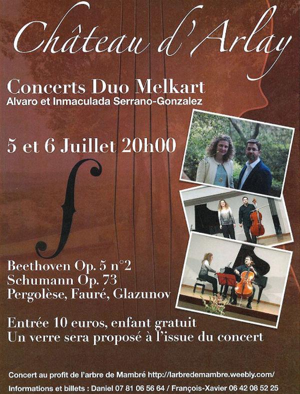 Concert classique au Château d'Arlay