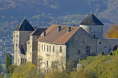 photo de Château de Belvoir