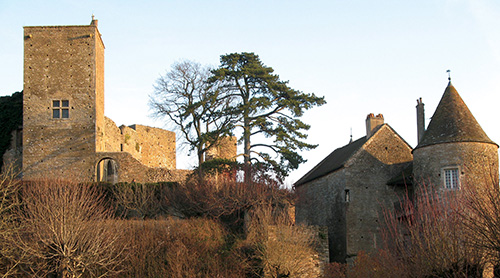 photo de Château de Brancion
