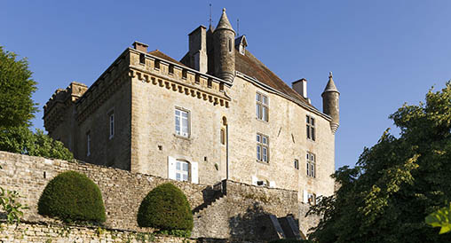photo de Château de Frontenay