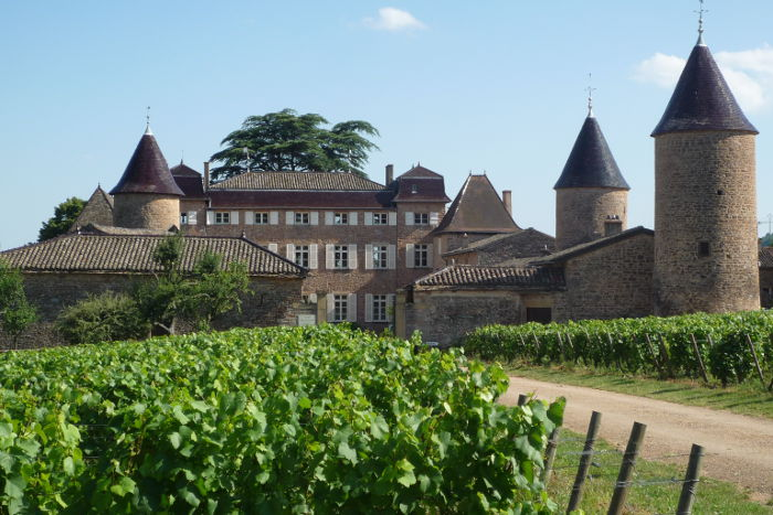 photo de Château de Chasselas