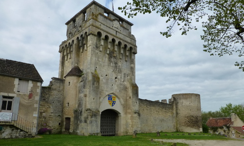 photo de Château de Druyes