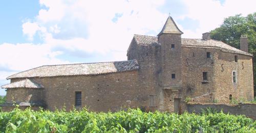 photo de Château de Vinzelles